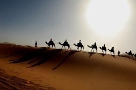 Desert-Emirats-Arabes-Unis-SAP-MENA